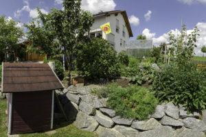 Read more about the article Im Garten – Am Pumpenhaus
