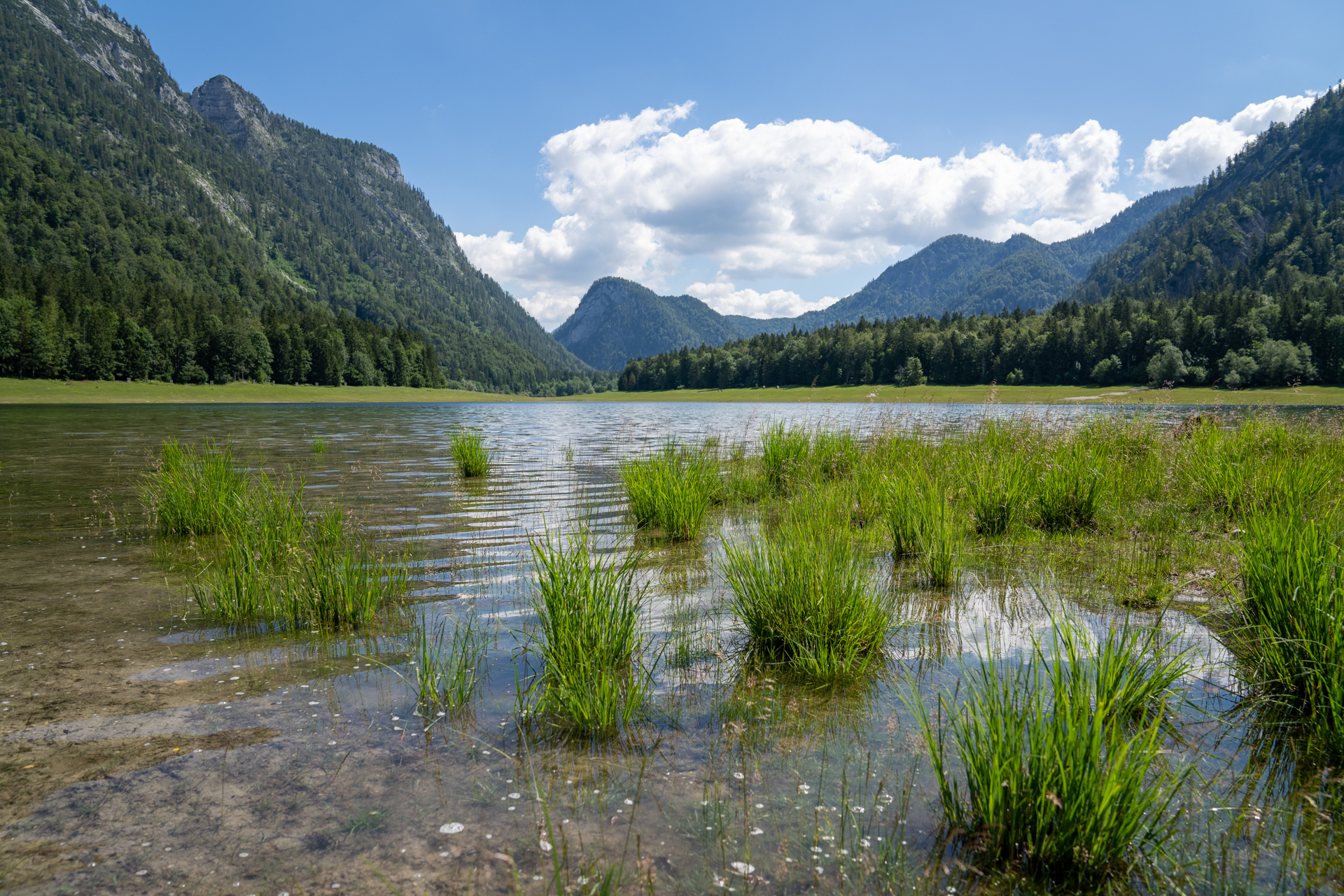 Read more about the article Mittersee